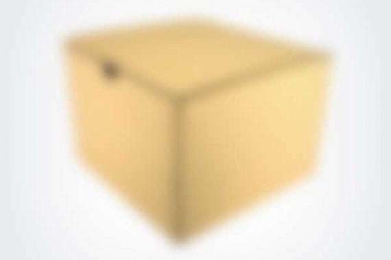 1-570x380 Brown Paperbox